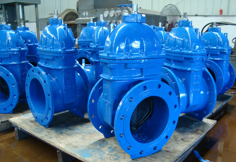 BS5163 Resilient Seated Gate Valve PN10