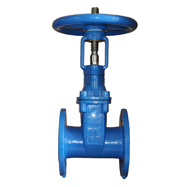 BS5163 Resilient Seated Gate Valve O.S.&Y